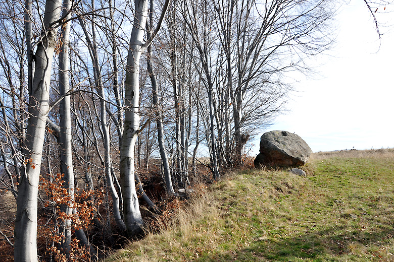 Здрав живот - Мигове на есен