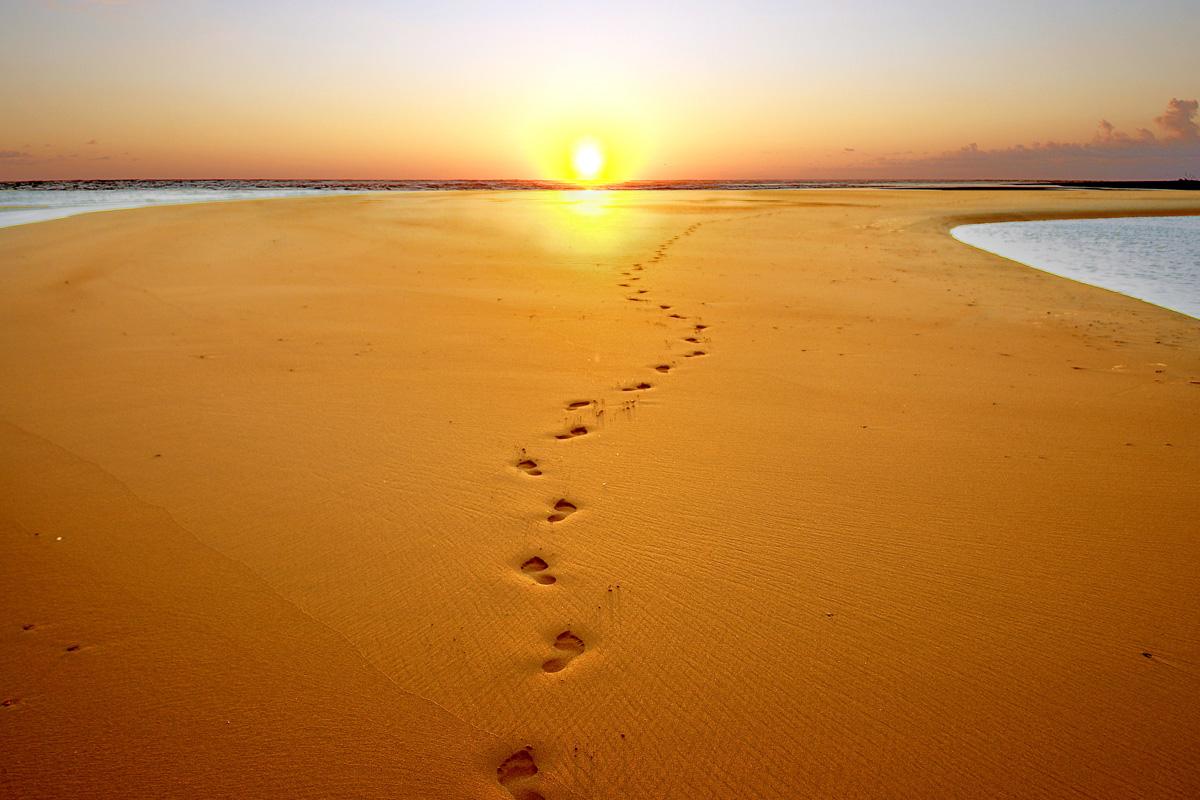 Стъпките на Бога