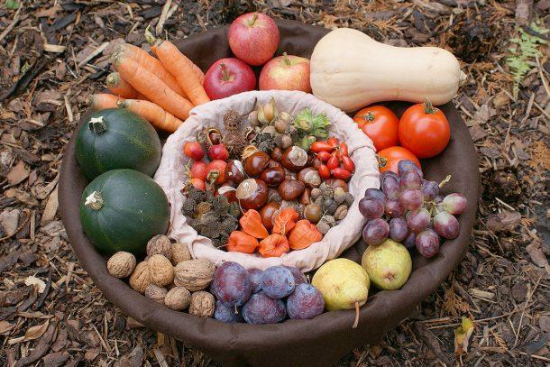 Коя е нашата естествена храна?