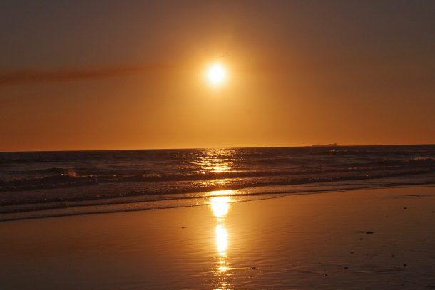 sunrice-beach