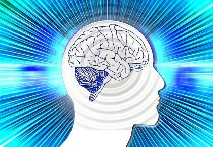 """Защо валдорфската педагогика """"работи"""" – гледната точка на невробиологията"""