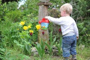 дете в градината