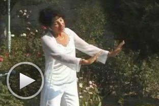 Паневритмия - учебен филм с Ина Дойнова - част 4
