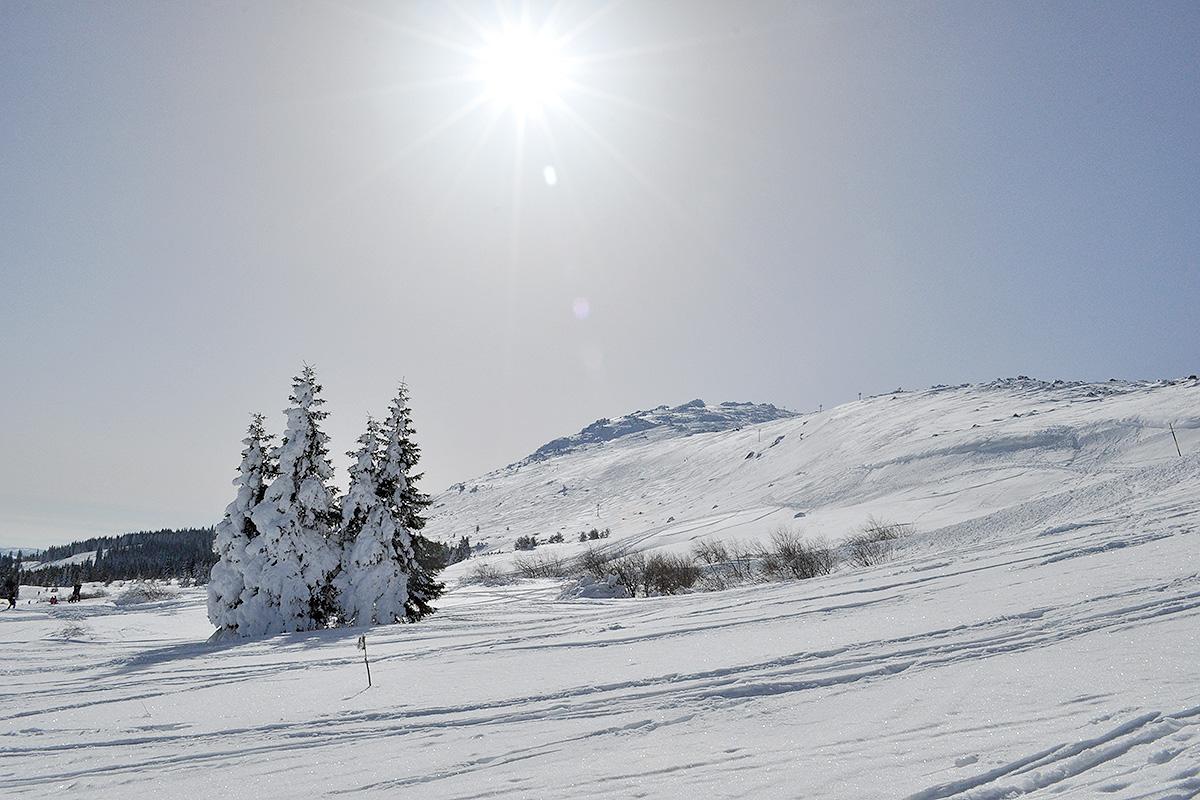 зима във Витоша
