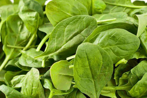 Spinach-zdrav-jivot