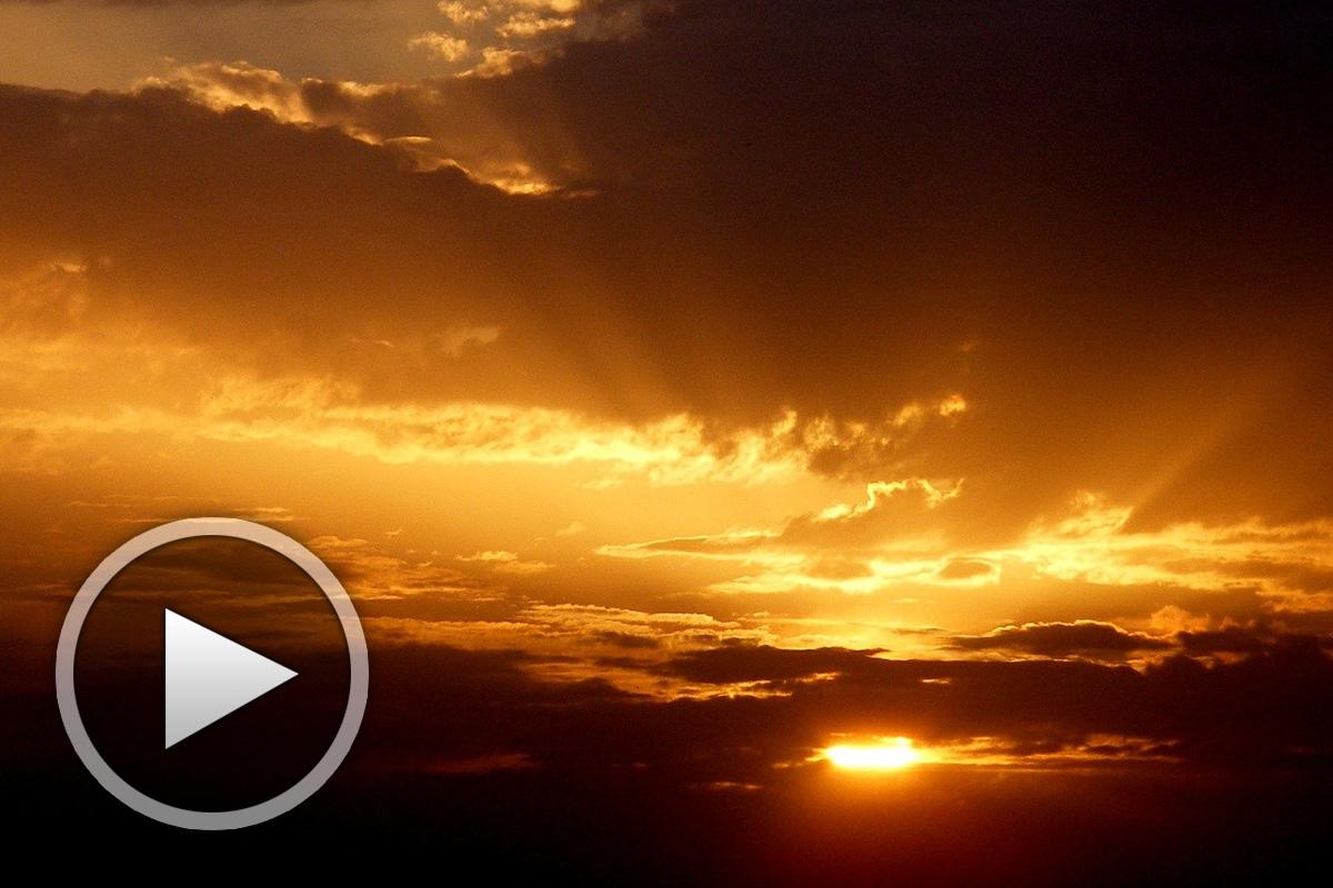 Химн на катарите - Le Bouvier