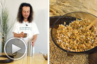 Рецепта за лимец в термос с мед и кокос - лимедко :-)