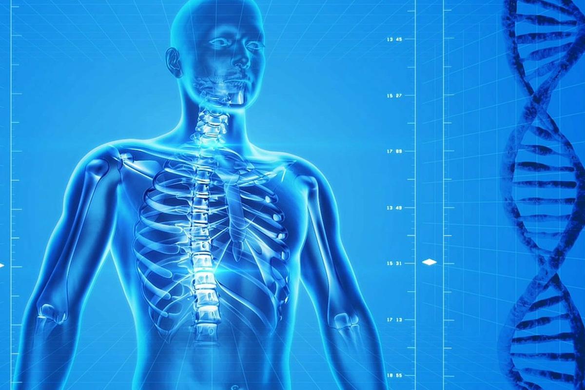 Остеопороза - заболяване, което се очаква да засегне 6,3 милиона души в света до 2050 г.
