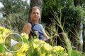 Здраве чрез природата – с Валентин Грандев