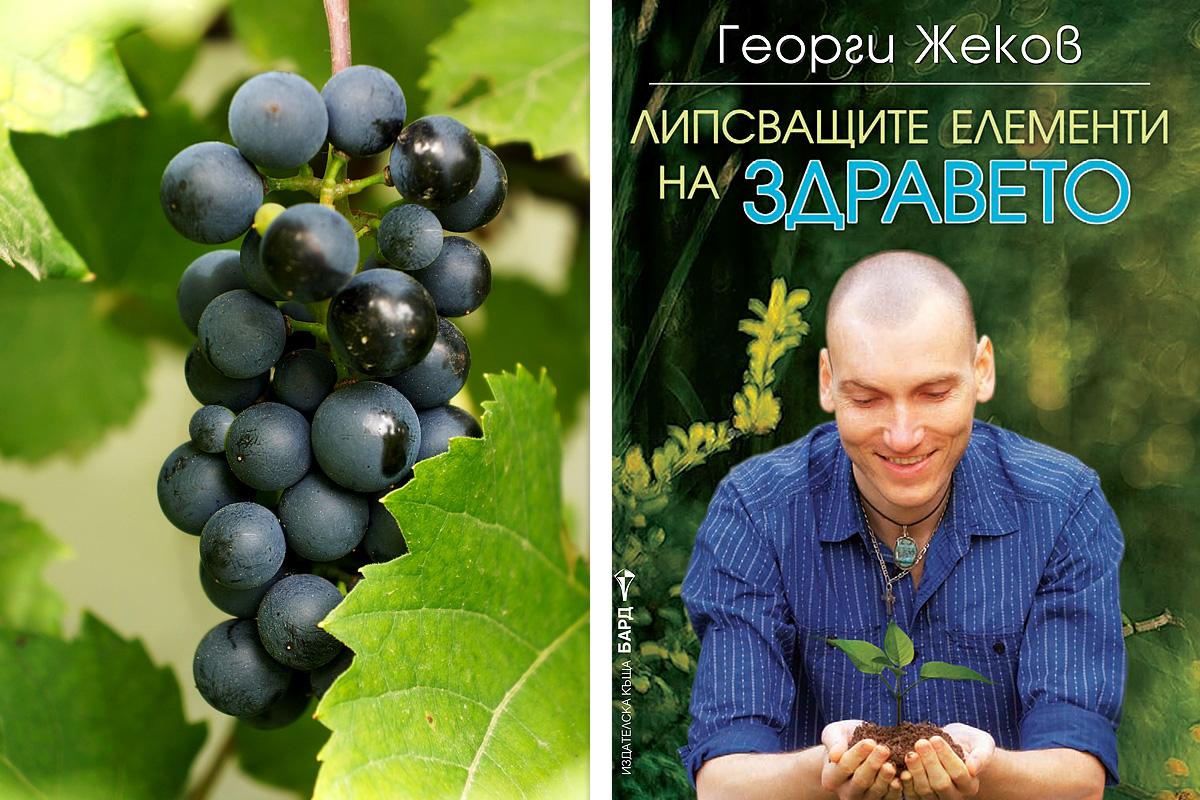 Храната като лекарство - от Георги Жеков