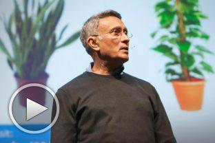 Камал Миатъл - как да отглеждаш свой собствен свеж въздух
