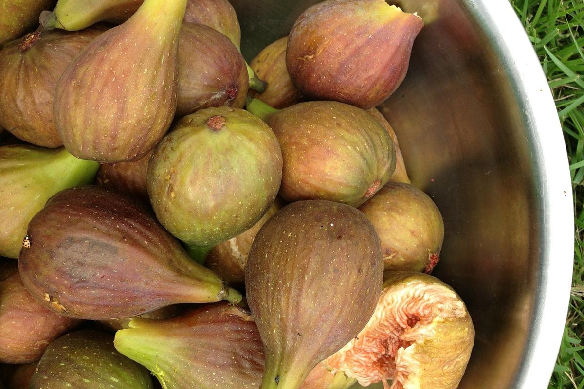Как са най-полезни смокините? - от д-р Гайдурков