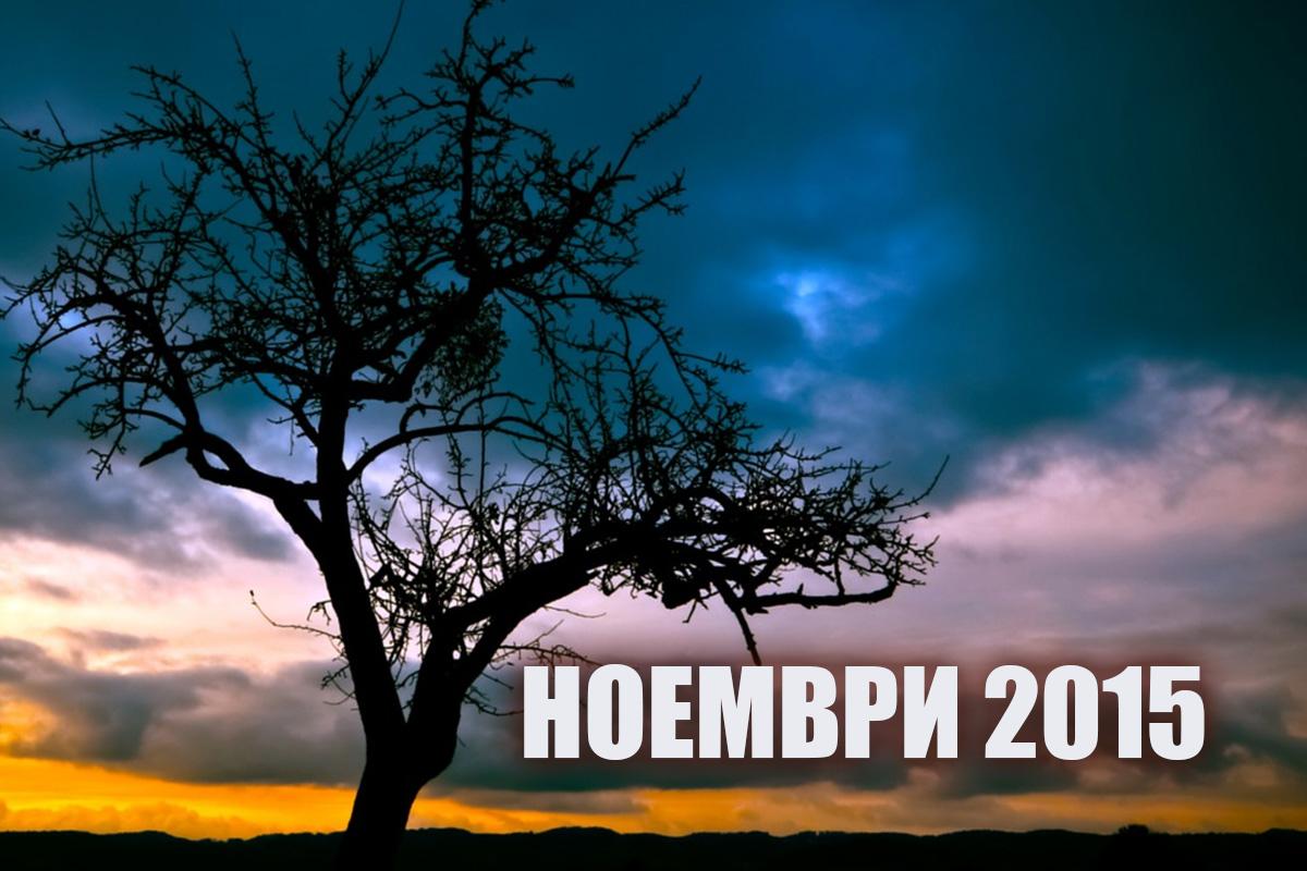 Най-четените статии през ноевмри 2015 г.