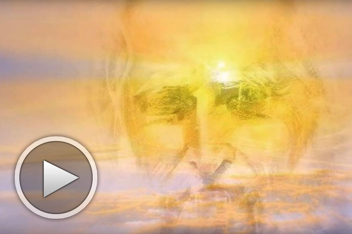 Виделината на Слънцето - представяне на книга