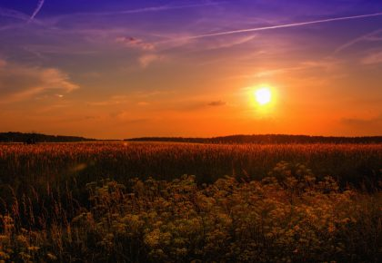 За поста през лятото - обръщение от Георги Костов
