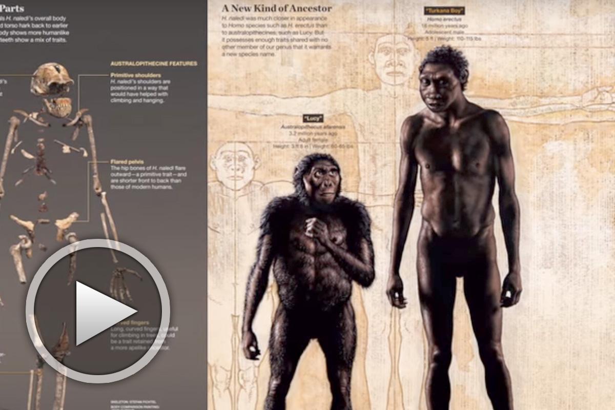 Произход на човека според светската наука - ДНН-епизод 1