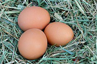 Притча за кокошите яйца