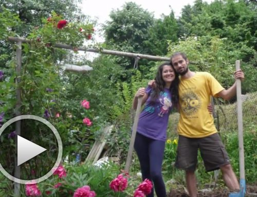Нашата градина – от Ел Фригано