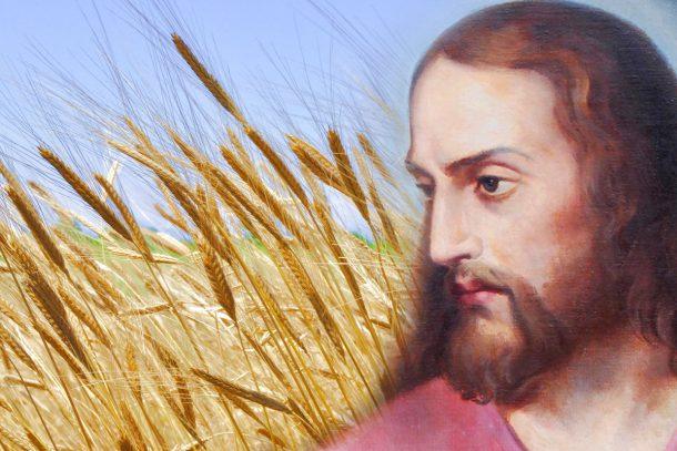 Духовната любов е резултатът от християнството