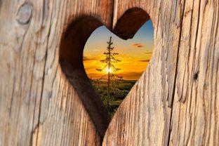 Рудолф Щайнер: Егоизъм, духовни връзки, братство и истина