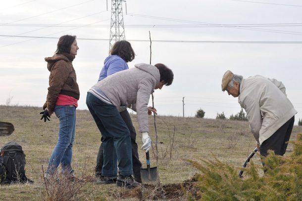 Да засаждаш дървета - един ден на радост около Кремиковския манастир