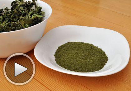 Коприва на прах - домашно приготвена суперхрана