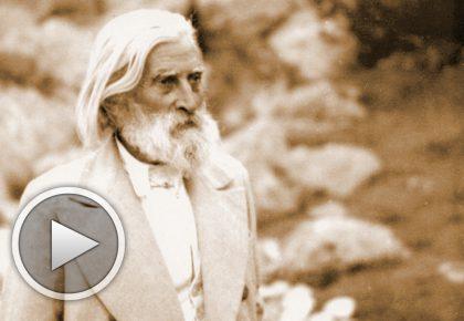 Красота - мисли от Учителя (аудио)